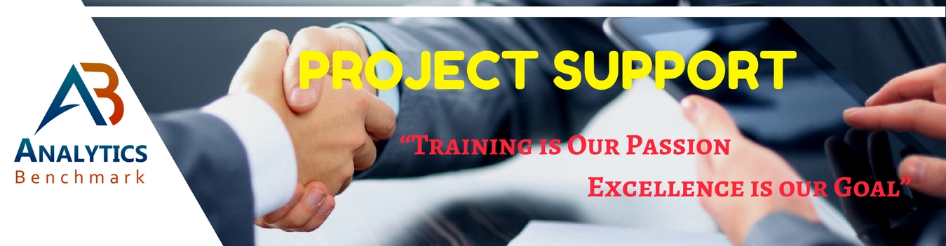 Project Support Services
